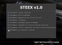 Steex Hack